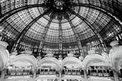 Roof of Galleries Lafayette